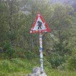 """Znak """"Uwaga Trolle"""" (Trollstigen)"""