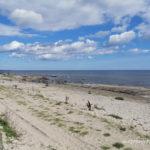 Sandby Borg plaża, Olandia